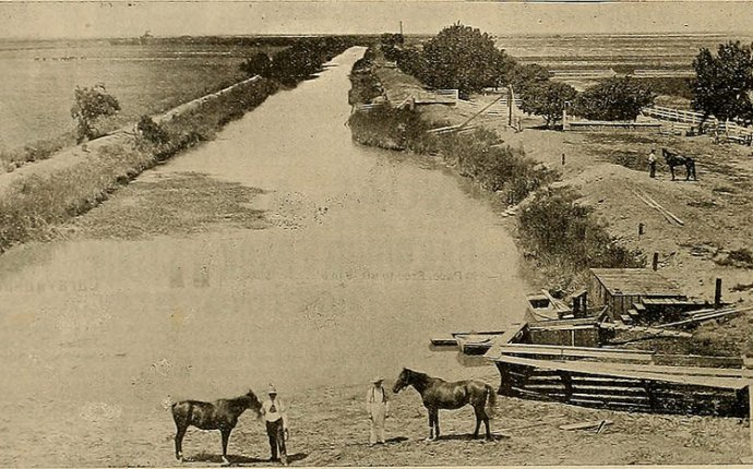Image from page 95 of Breeder and sportsman (1882