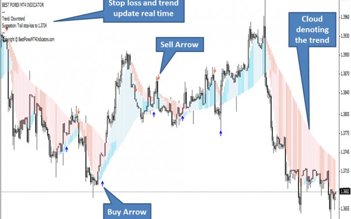 Training on top binary options platforms for usa traders
